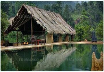 Rainforest Edge, Ratnapura