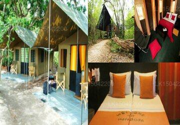 Mahoora Safari Camping, Yala