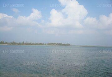 Blue Haven, Jaffna
