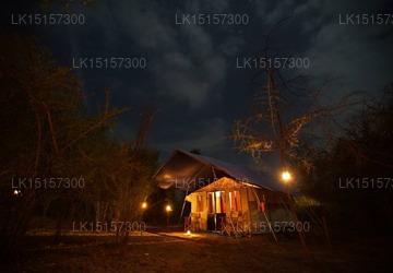 Big Game Camps  Lodges Wilpattu, Wilpattu