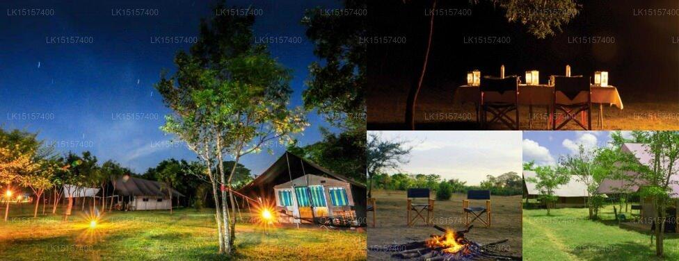 Big Game Camps & Lodges Udawalawe, Udawalawe