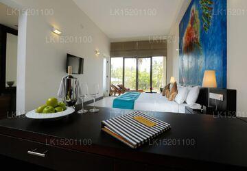 Shimmer Suite Room