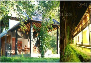 Pinthaliya Resort  Spa, Sigiriya