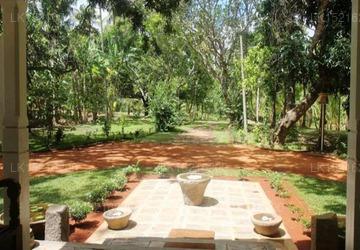 Cadjan sacred, Anuradhapura