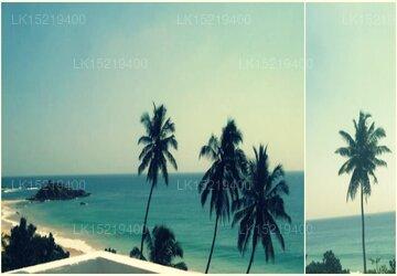 Sunbeam Beach Resort, Mirissa