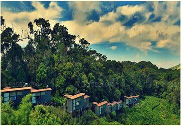 The Rainforest Ecolodge - Sinharaja, Deniyaya