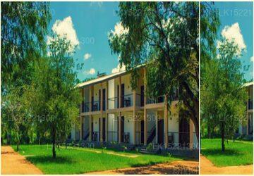Lario Resort, Sigiriya