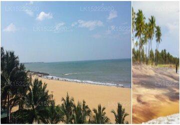 C Negombo, Negombo