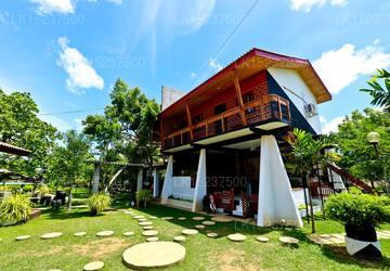Eco Hotel Black  White, Anuradhapura