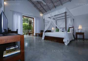 Superior Deluxe Room With Jungle View