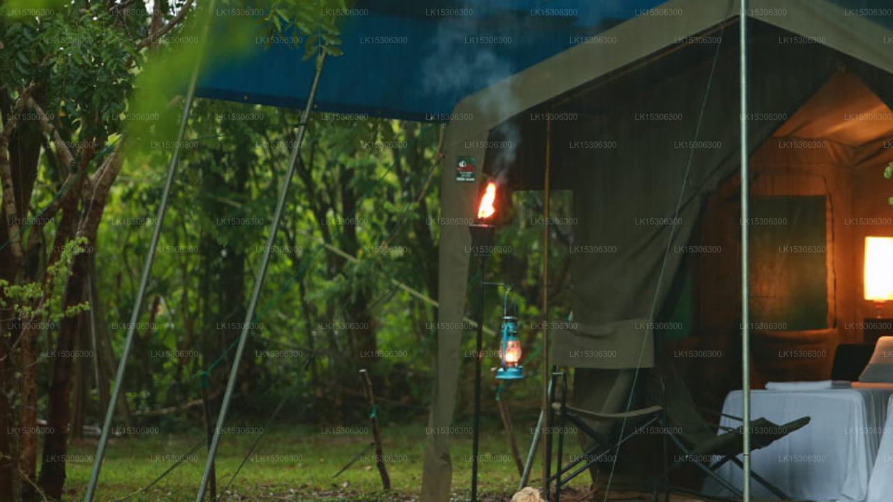 Eco Team Safari Camps Wilpattu (Pvt) Ltd, Wilpattu