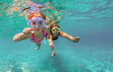 Snorkelling from Negombo