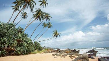 Day Tours from Bentota