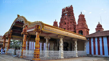Day Tours from Jaffna