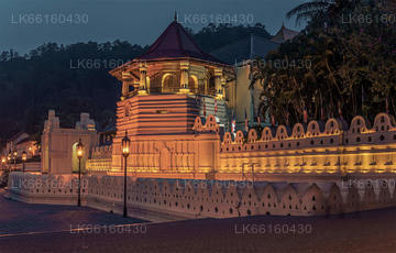 Day Tours from Kandy