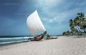 City Tours from Negombo