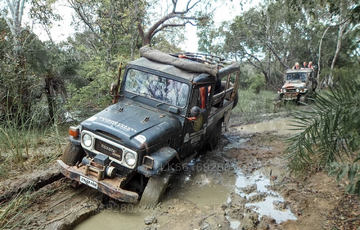 4WD & Off-road Tours