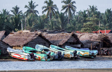 Boat Tours from Negombo