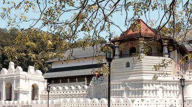 Temples & Wilderness from Negombo (2 Days)